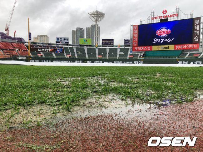 [현장 SNS] 가을 폭우에 흠뻑 젖은 사직구장