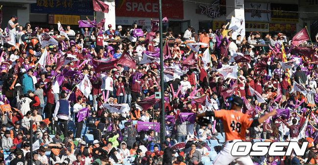 [사진]넥센 원정팬들의 열띤 응원