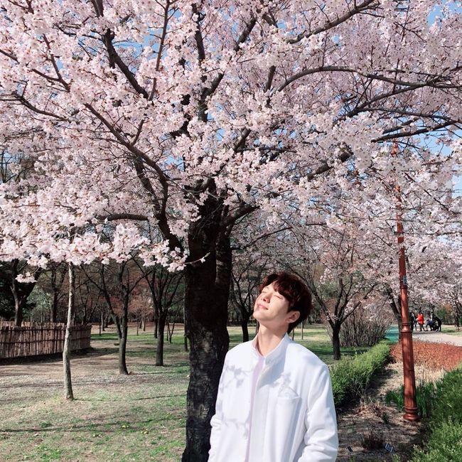 단 하나의 사랑 김명수, 벚꽃 아래 천사 비주얼 [★SHOT!]
