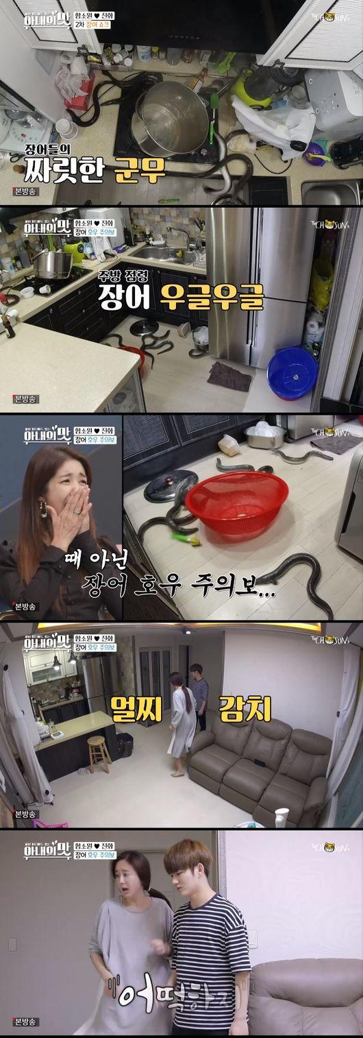아비규환…'아내의 맛'함소원♥진화,둘째위해 장어탕 도전,박명수