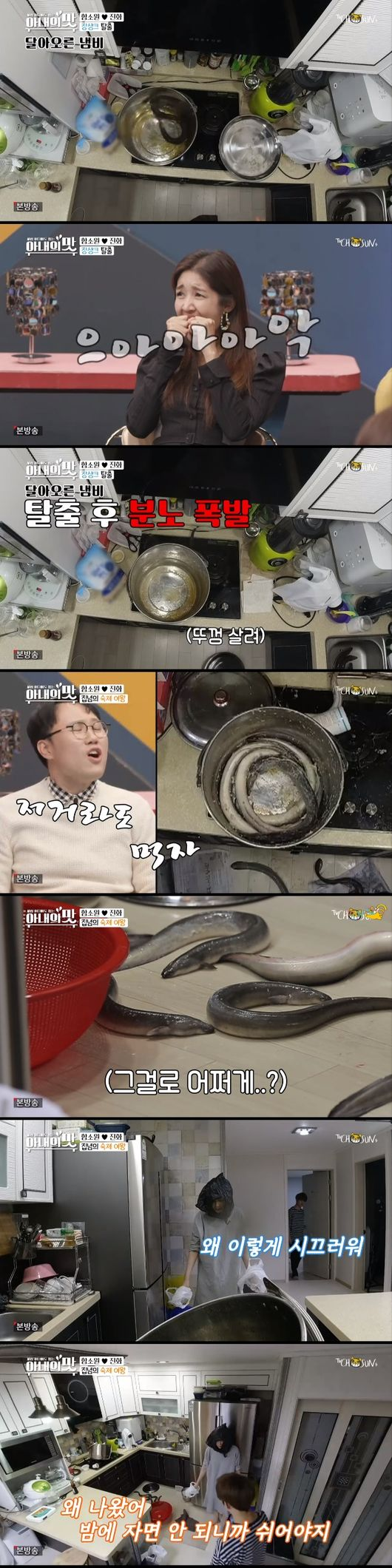 ''산후조리 제대로 되지 않아''..'아내의 맛' 함소원♥진화, 둘째 임신 위해 장어로 보양[어저께TV]