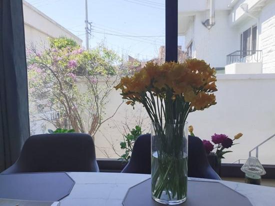 김원효♥심진화, 마당 딸린 주택으로 이사..카페 뺨치는 인테리어 [★SHOT!]