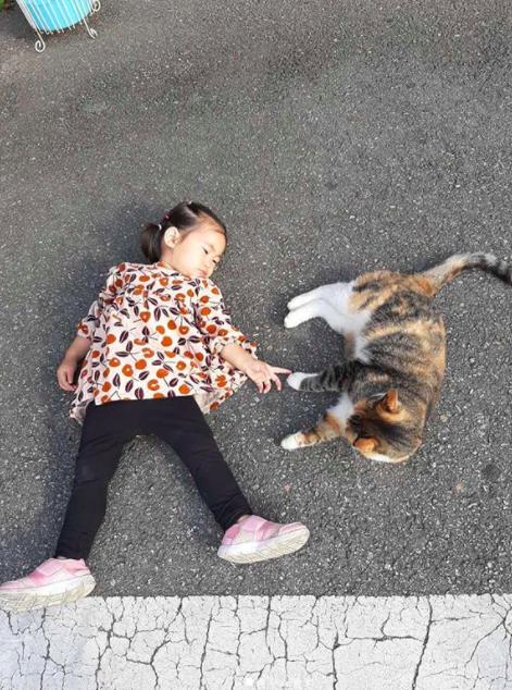 함소원 딸 혜정, 고양이와 소통 위해 길바닥에 누웠다 야옹이 친구[Oh!마이 Baby]